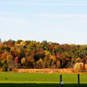 fall foliage drives feature