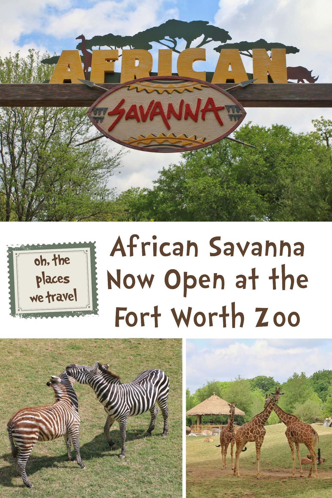 African Savanna at Fort Worth Zoo