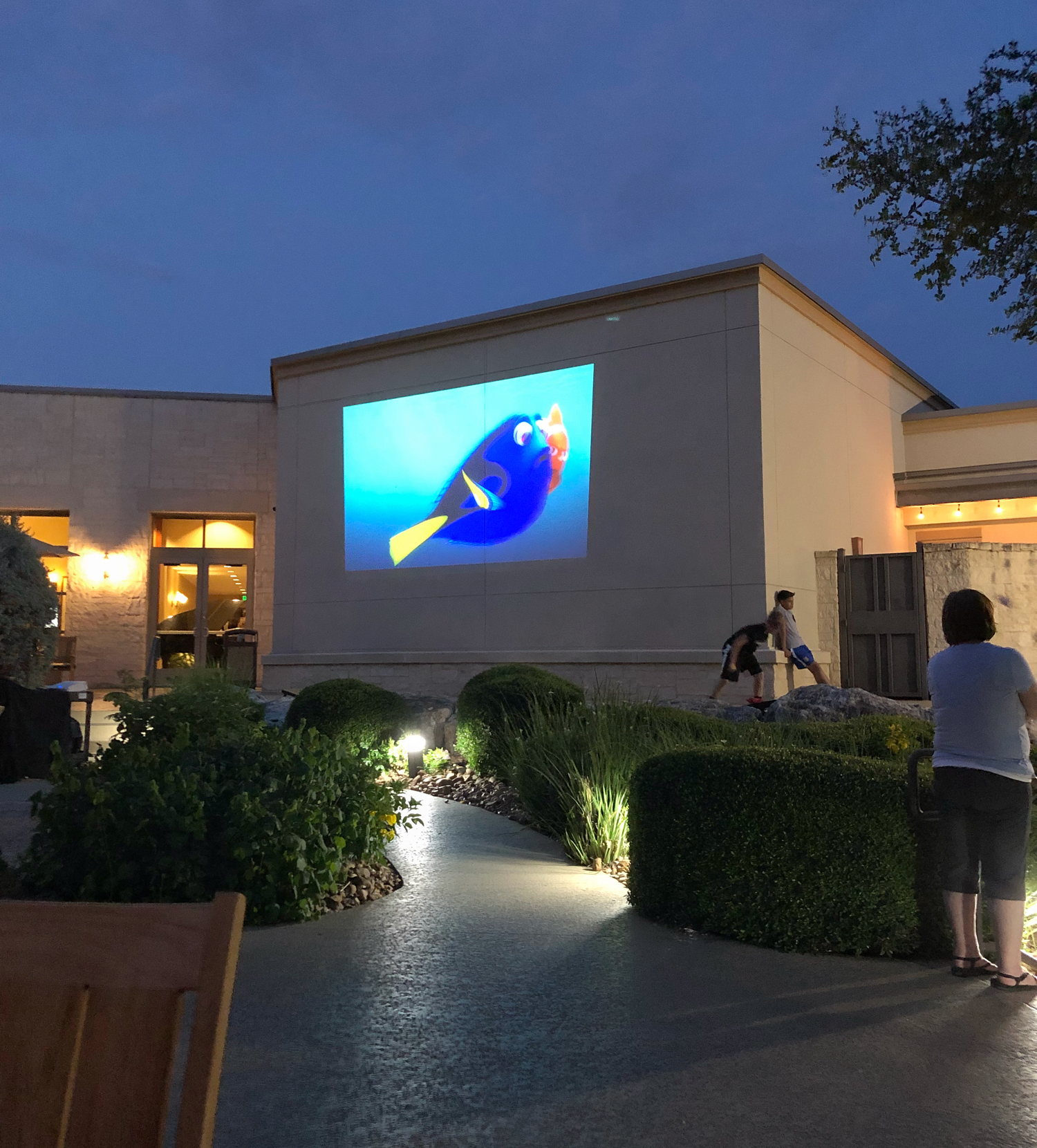 watch Disney movie outside at hotel pool