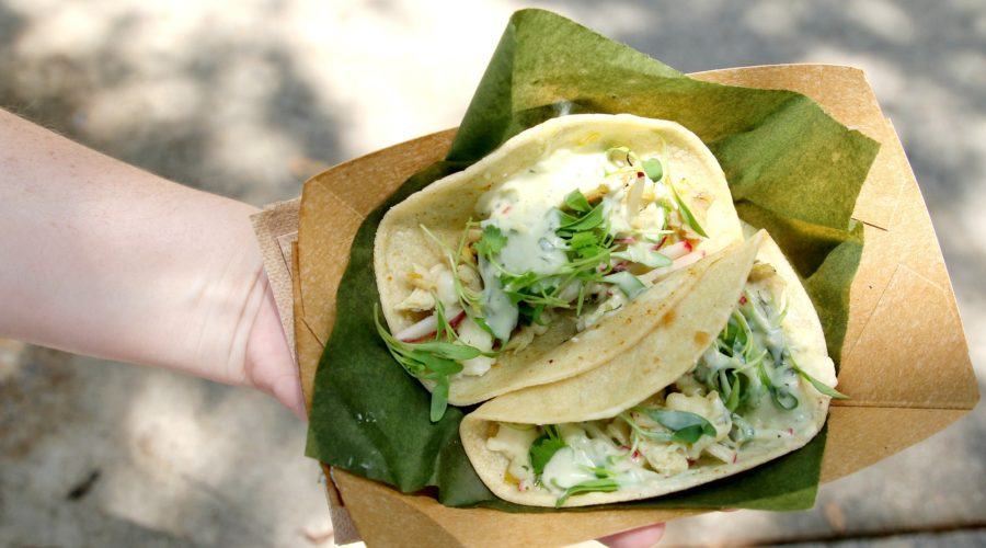 chicken-tacos-from-SeaWorld-food-festival