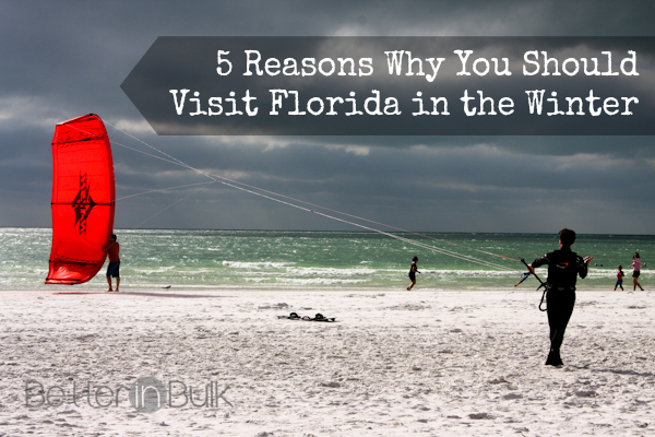 5 Reasons Why You Should Visit Florida in the Winter