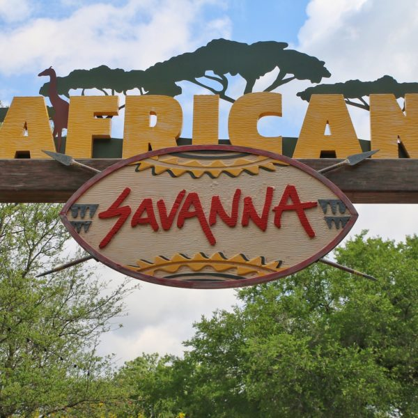 New African Savanna Exhibit Open at the Fort Worth Zoo
